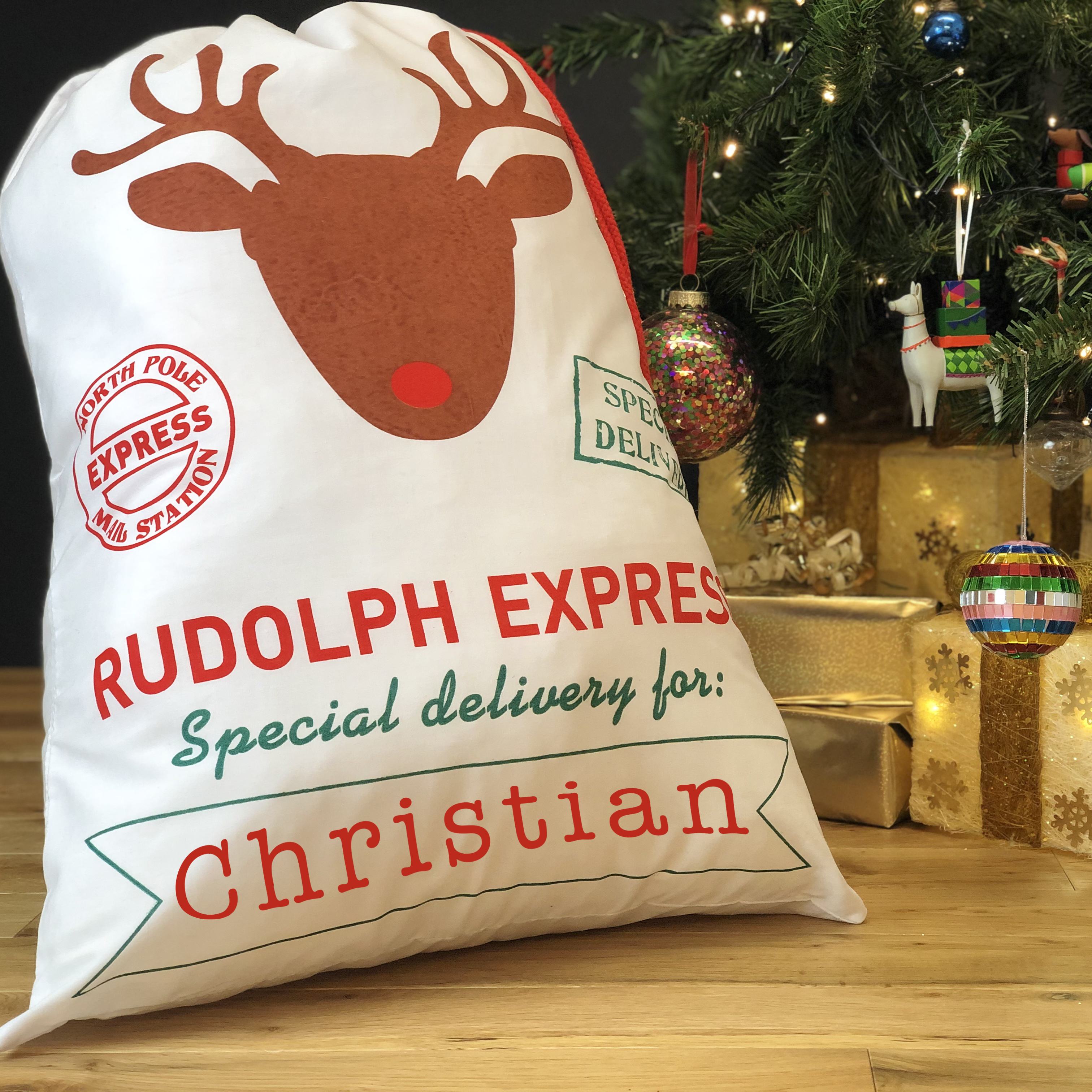 sack2-rudolph express copy