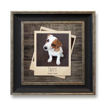 Pets-Square-Photoboard-03-copy