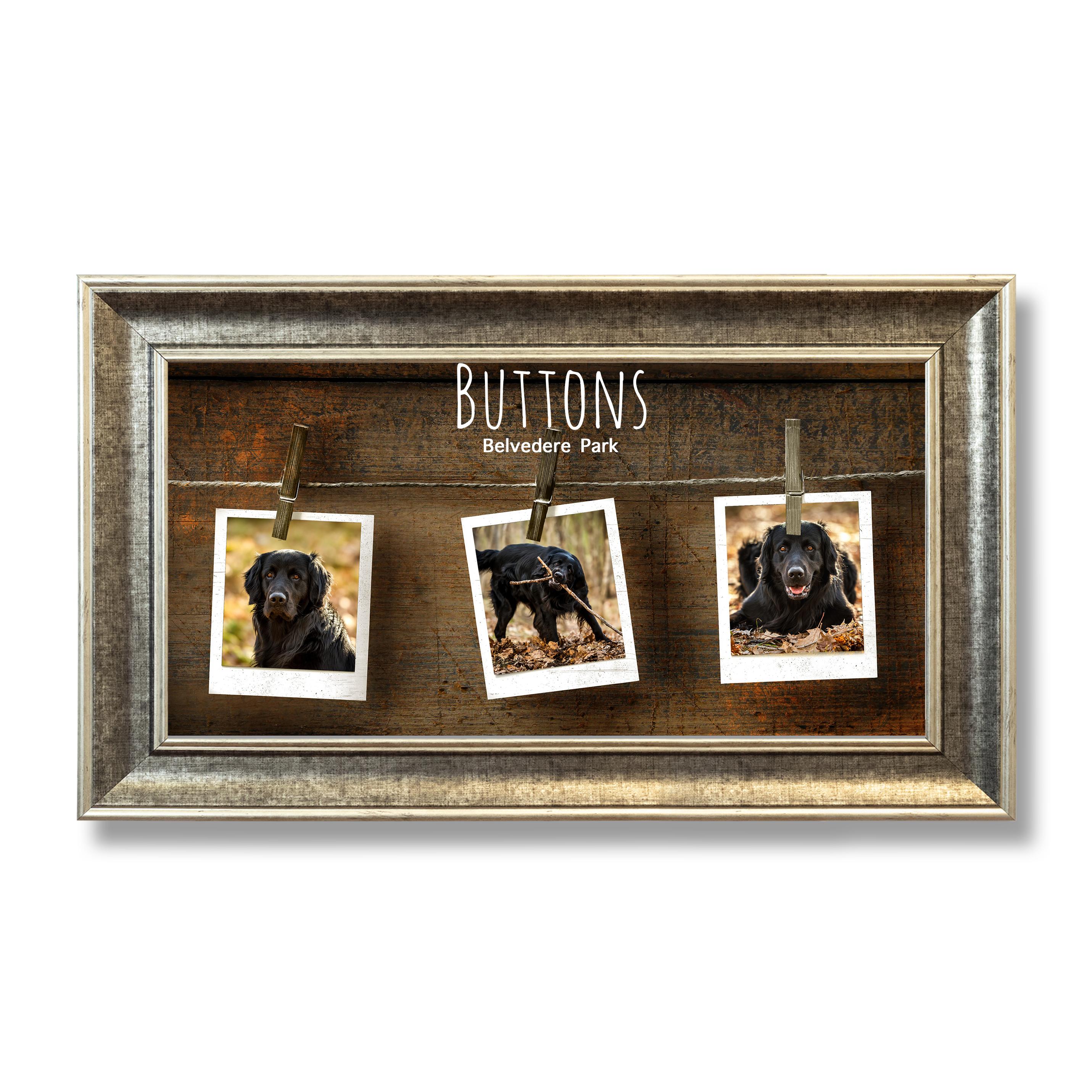 Pets Wide Photoboard 05